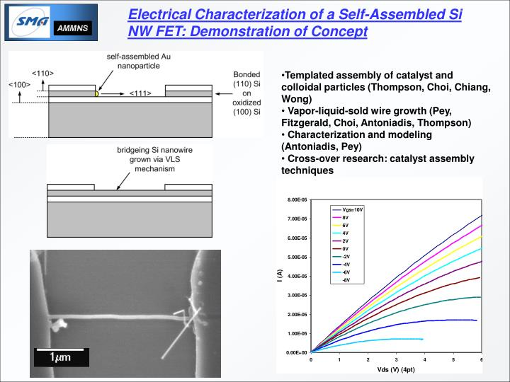 Electrical Characterization of a Self-Assembled Si NW FET: Demonstration of Concept