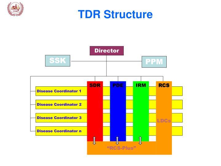 TDR Structure
