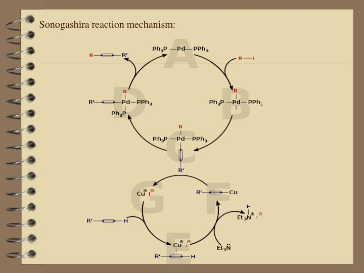 Sonogashira reaction mechanism
