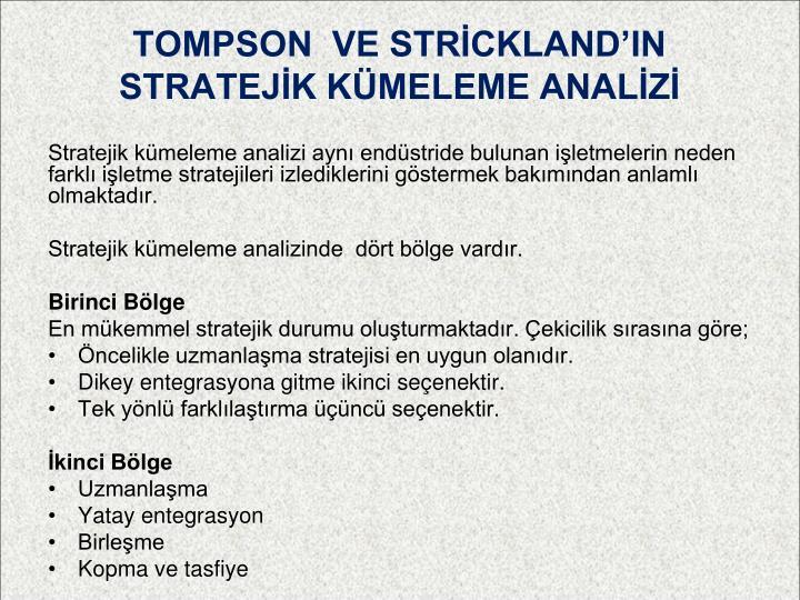 TOMPSON  VE STRİCKLAND'IN STRATEJİK KÜMELEME ANALİZİ