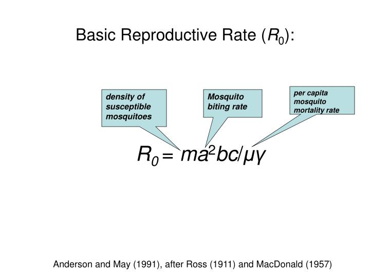 Basic Reproductive Rate (