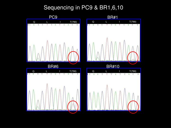 Sequencing in PC9 & BR1,6,10