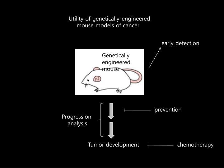 Utility of genetically-engineered