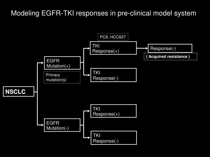 Modeling EGFR-TKI responses in pre-clinical model system