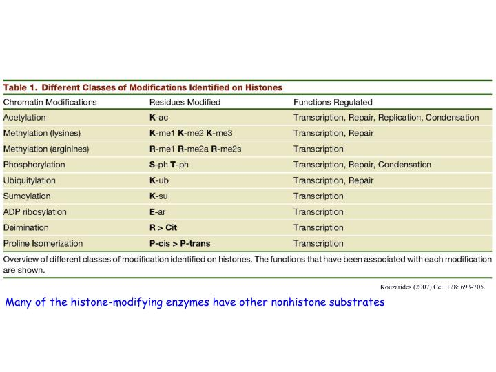 Kouzarides (2007) Cell 128: 693-705.