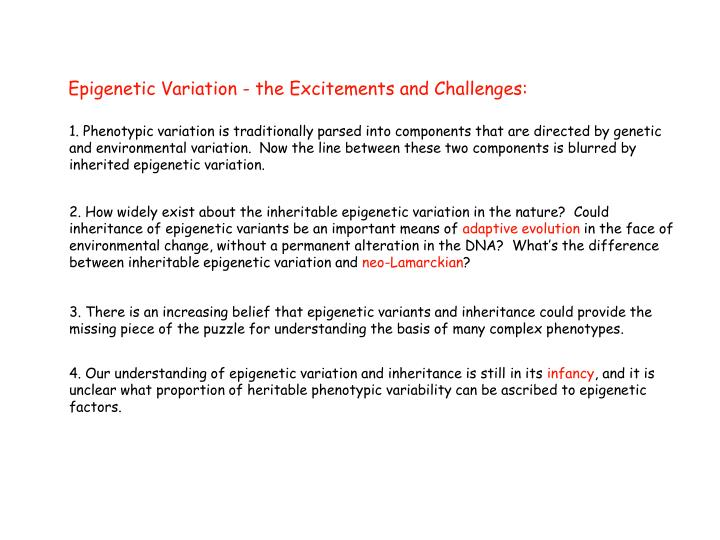 Epigenetic Variation - the Excitements and Challenges: