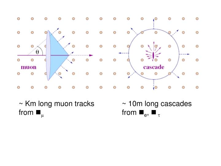 ~ Km long muon tracks from