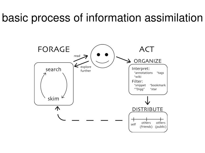 basic process of information assimilation