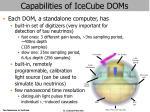 capabilities of icecube doms
