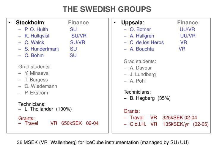 THE SWEDISH GROUPS