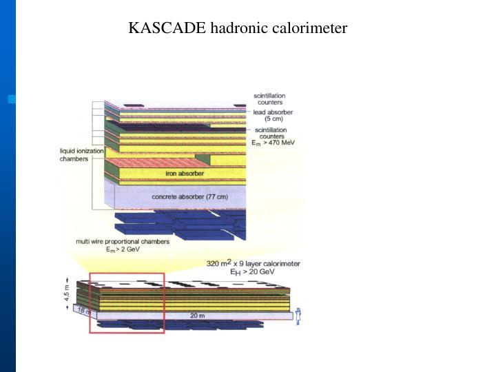 KASCADE hadronic calorimeter