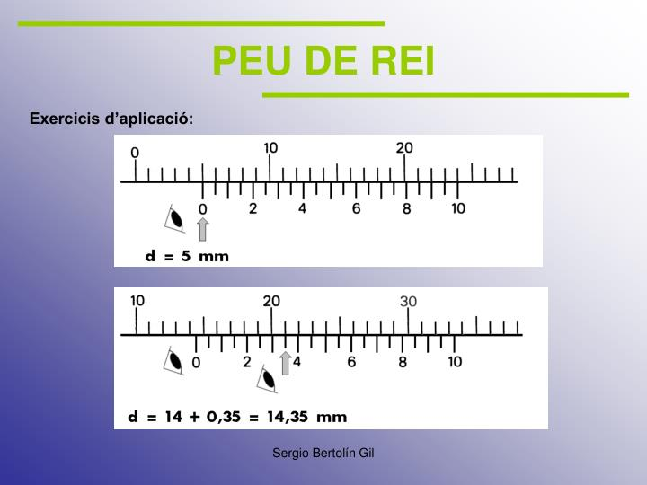 PEU DE REI