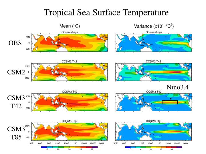 Tropical sea surface temperature