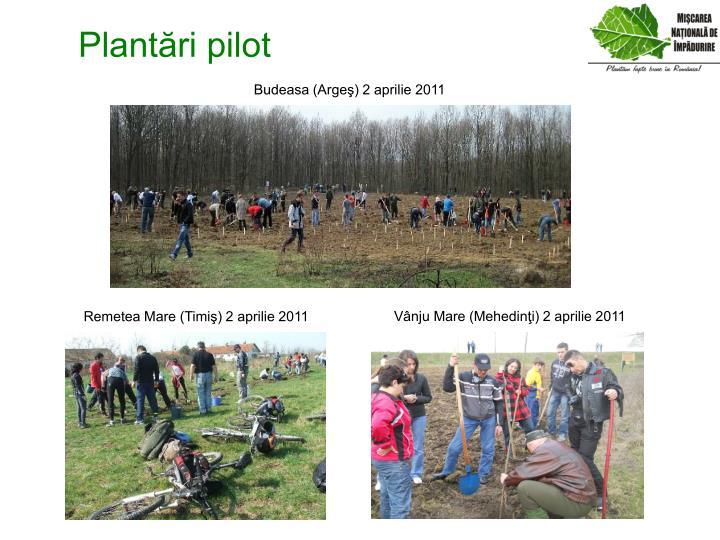 Plantări pilot