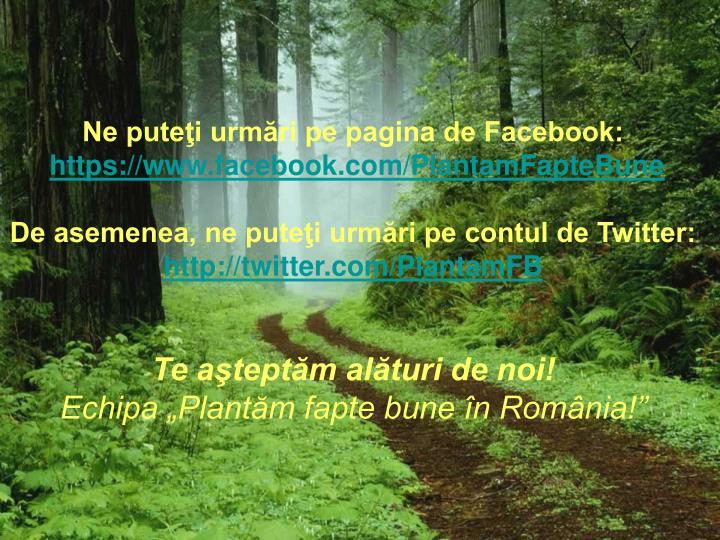 Ne puteţi urmări pe pagina de Facebook: