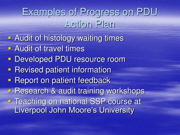 Examples of Progress on PDU Action Plan