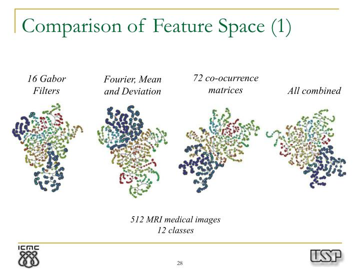Comparison of Feature Space (1)