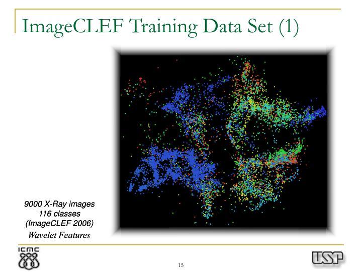 ImageCLEF Training Data Set (1)