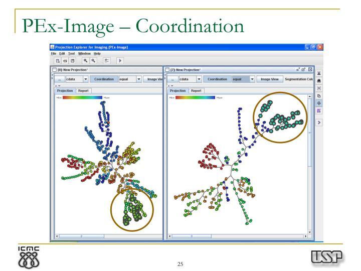 PEx-Image – Coordination
