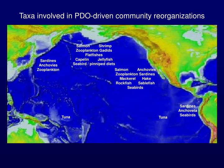 Taxa involved in PDO-driven community reorganizations