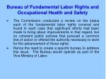 bureau of fundamental labor rights and occupational health and safety1