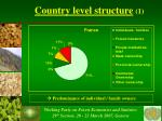 country level structure 1