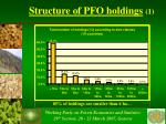 structure of pfo holdings 1