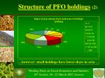 structure of pfo holdings 2
