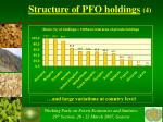 structure of pfo holdings 4