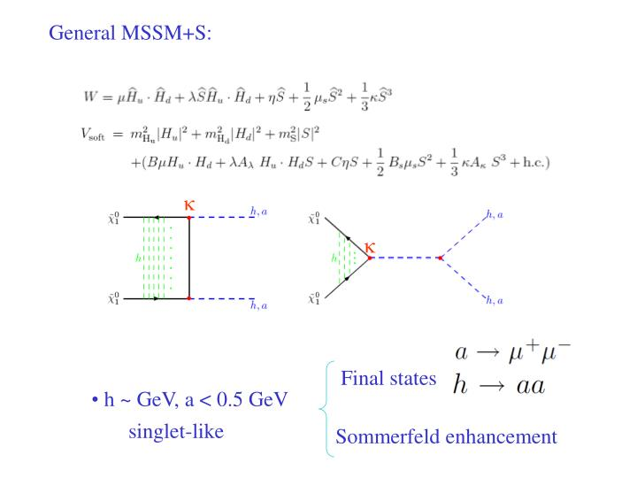 General MSSM+S: