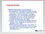 projectsubsidies1