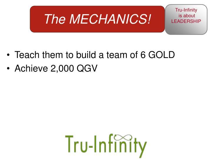 Teach them to build a team of 6 GOLD