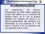 plurianualidad