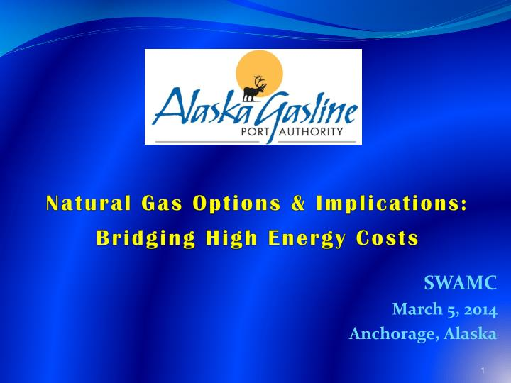 Natural Gas Options & Implications: