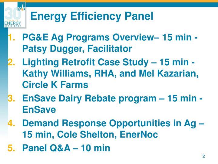 Energy Efficiency Panel