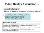 video quality evaluation 1
