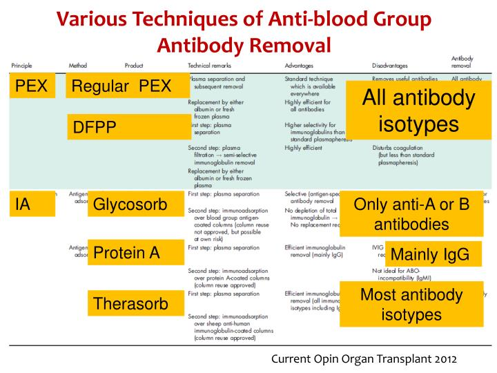Various Techniques of Anti-blood Group Antibody Removal