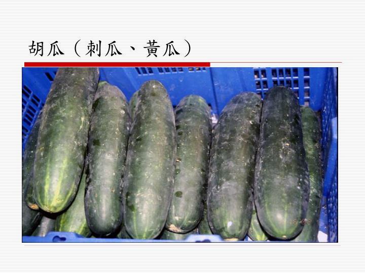胡瓜(刺瓜、黃瓜)