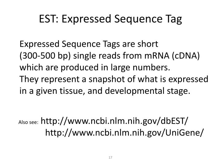 EST: Expressed Sequence Tag