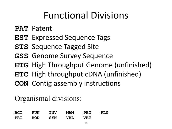 Functional Divisions
