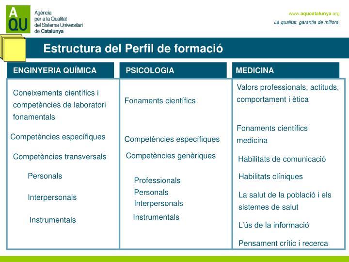 Estructura del Perfil de formació
