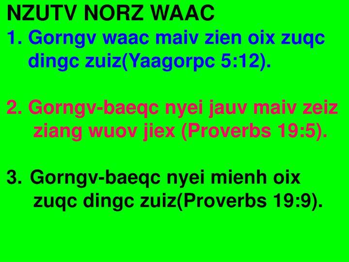 NZUTV NORZ WAAC