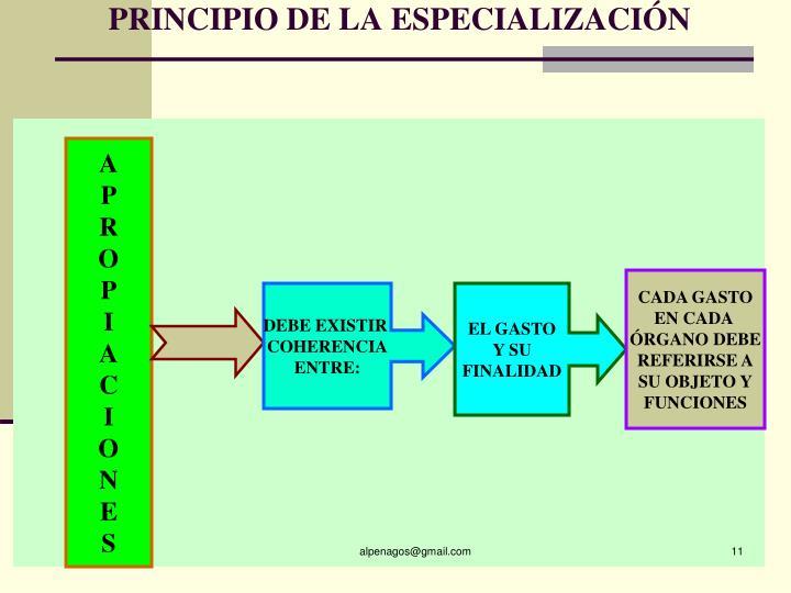 PRINCIPIO DE LA ESPECIALIZACIÓN