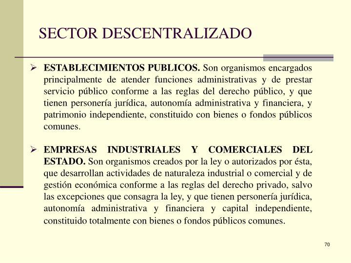 SECTOR DESCENTRALIZADO
