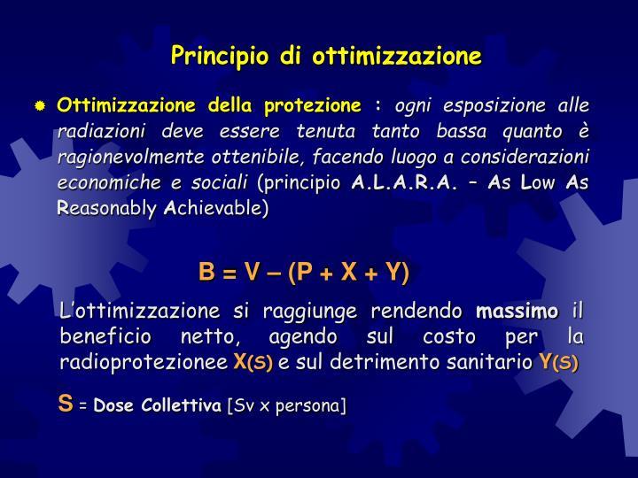 Principio di ottimizzazione