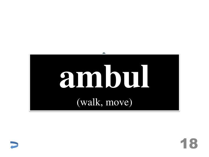 ambul