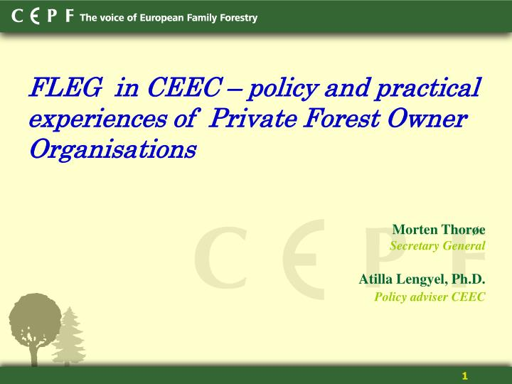 FLEG  in CEEC – policy and practical