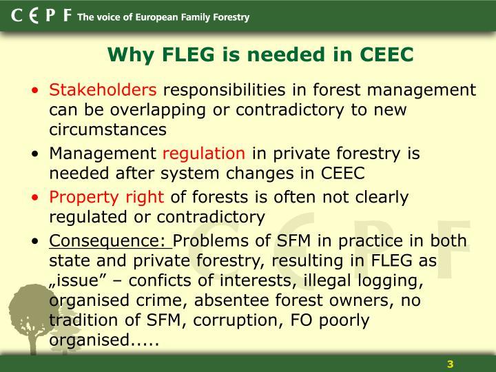 Why FLEG