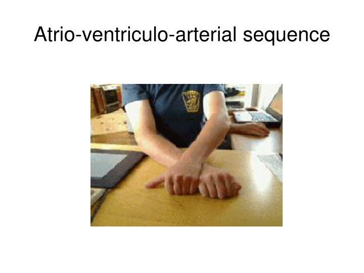 Atrio-ventriculo-arterial sequence