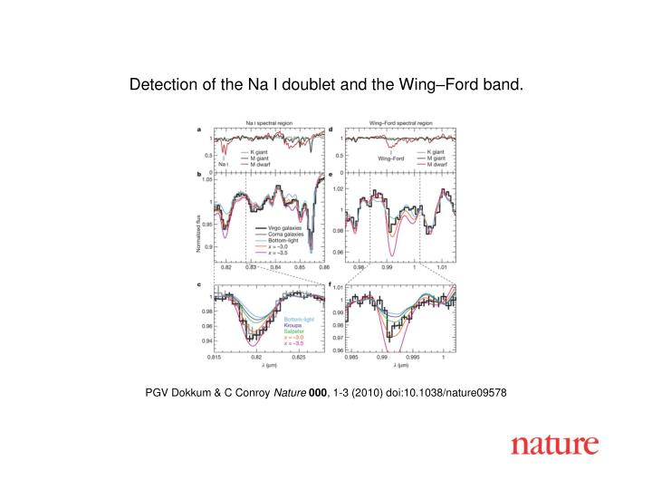 Detection of the Na I doublet and the Wing–Ford band.